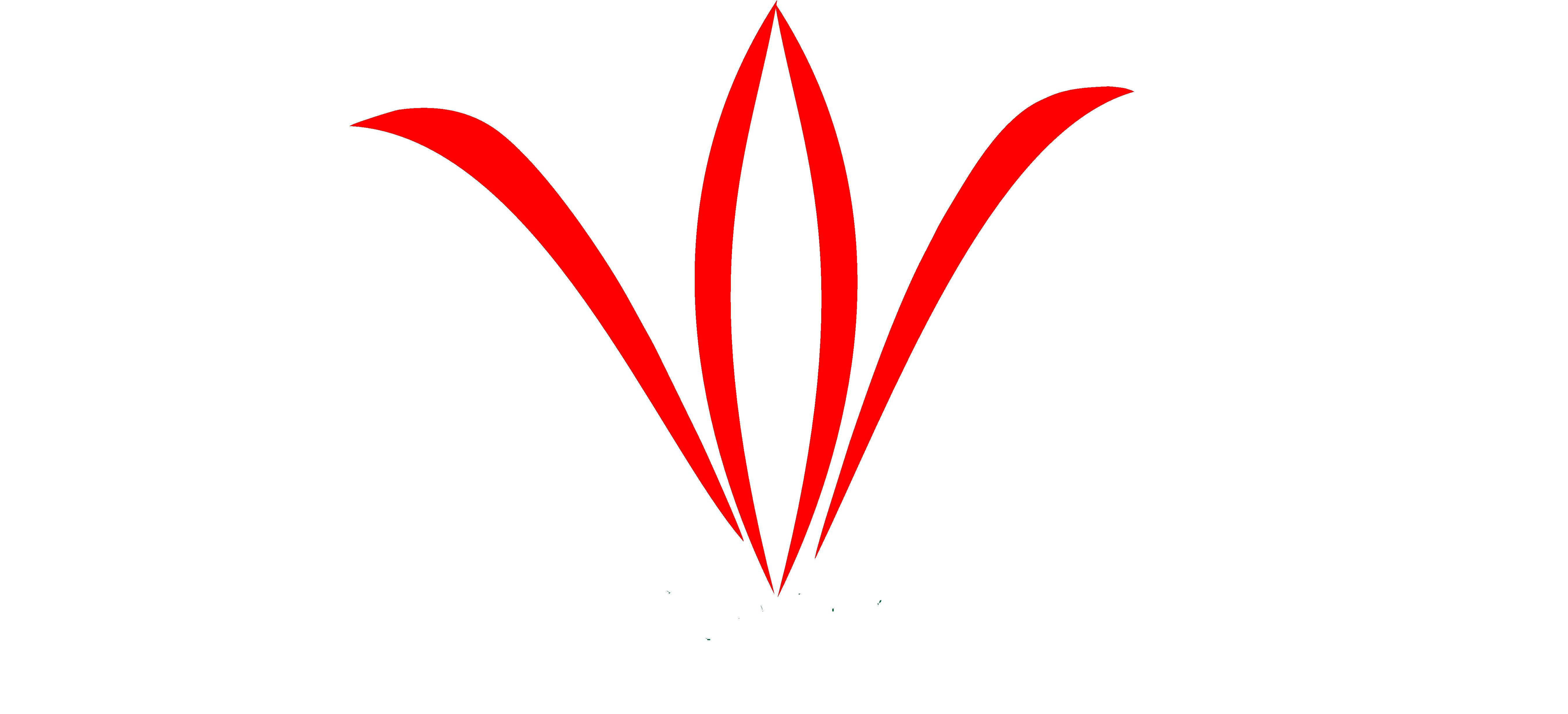 """Муниципальное казенное учреждение """"Амгинская межпоселенческая централизованная библиотечная система"""""""
